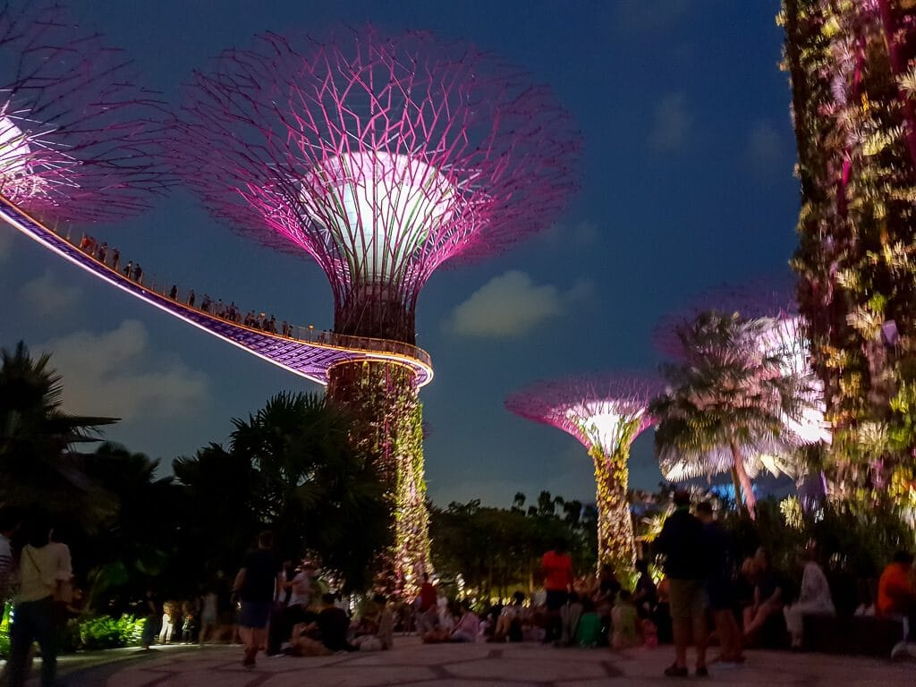 Supertrees beleuchtet am Abend