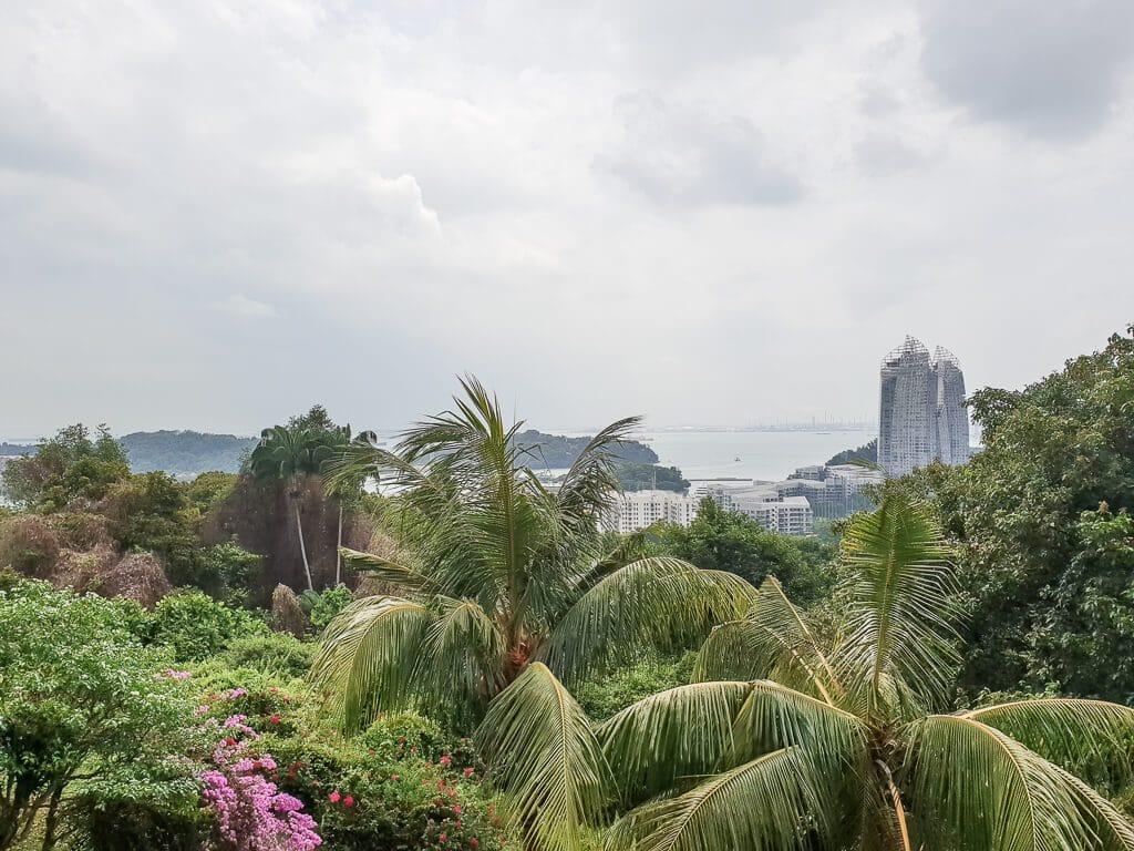 Palmen und Ausblick auf eine Skyline
