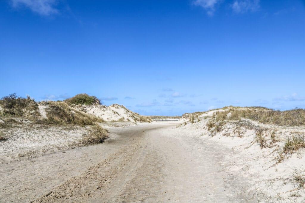 sandiger Weg zwischen kleinen Dünen
