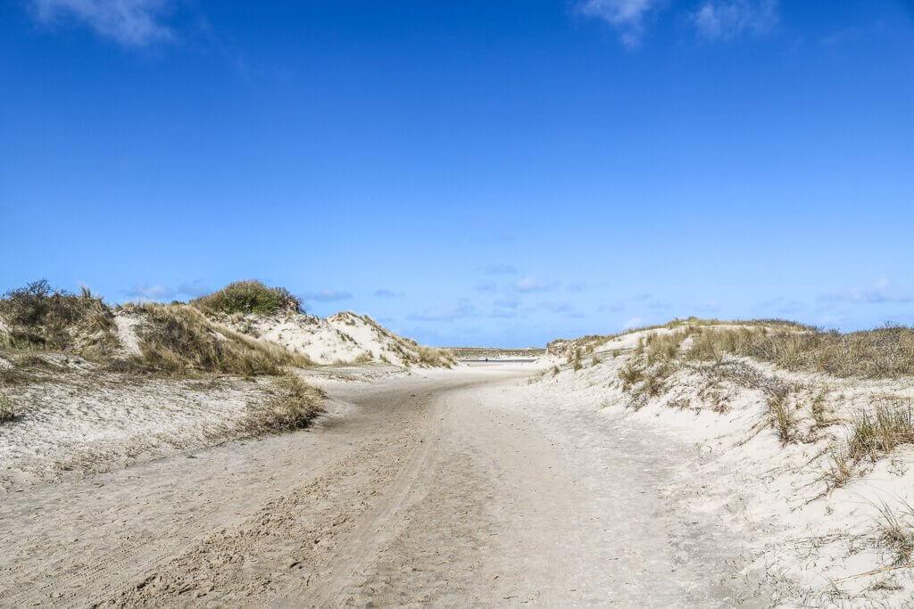 Wanderweg im Sand zwischen flachen Dünen mit Gras