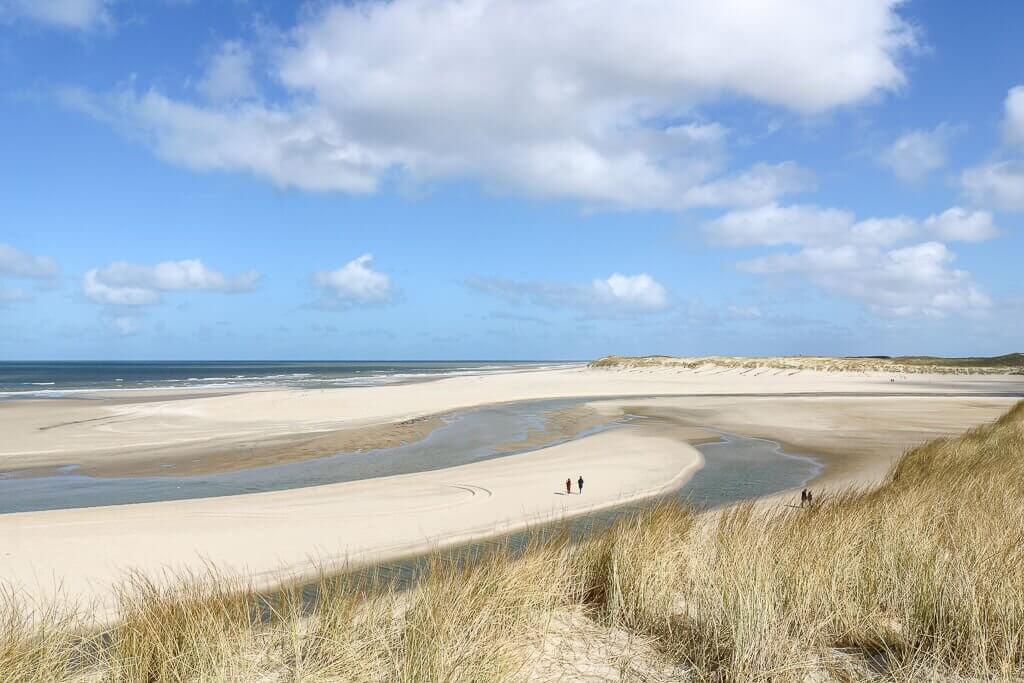 Dünen mit Gras, dahinter Sandstrand und das Meer