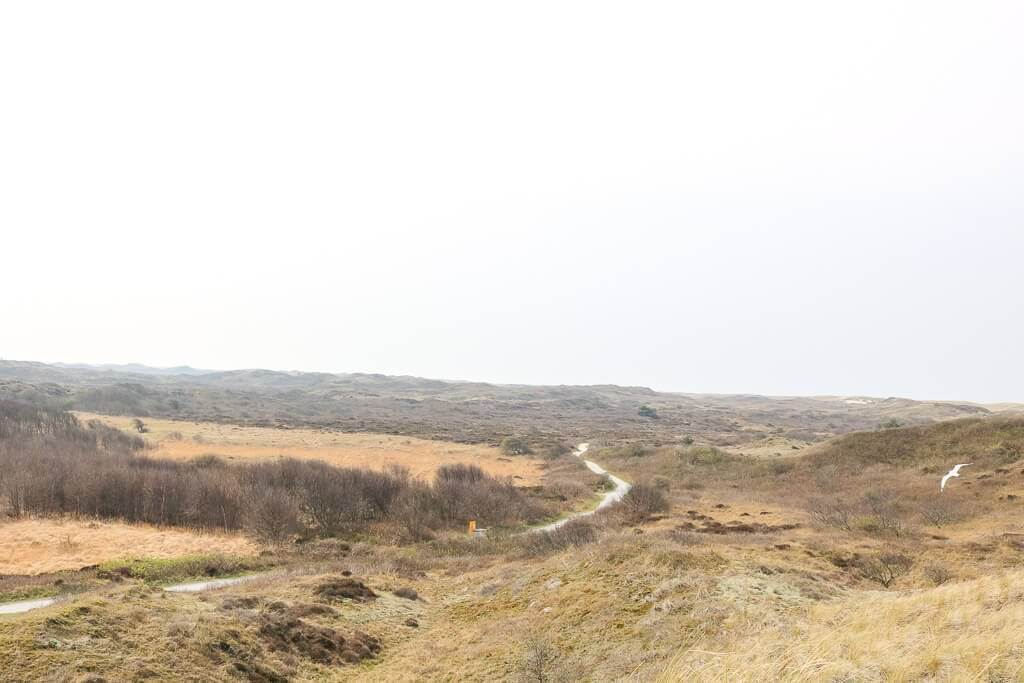 Texel - Wanderweg im Dünenpark am Ecomare