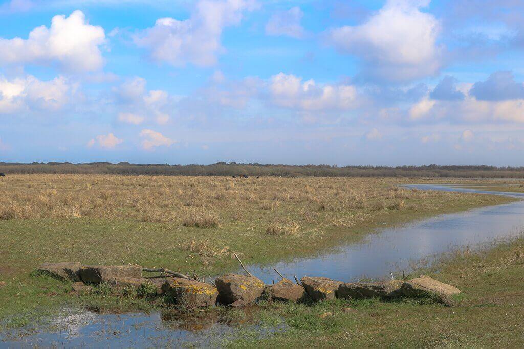 Texel - Wanderweg De Koog