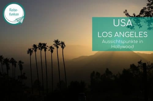 Sonnenuntergang in den Hollywood Hills - Palmen, dahinter Hügel und oranger Himmel