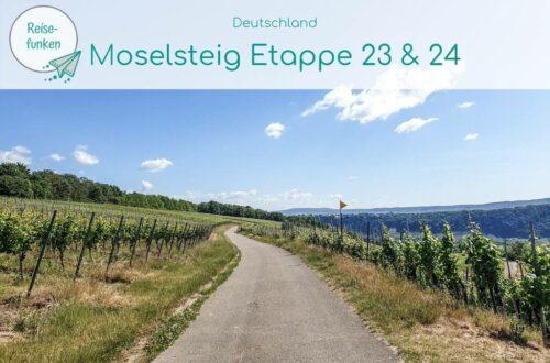 """Bild mit einem Wanderweg zwischen Weinbergen bei blauem Himmel - oben ein helles Overlay mit der Aufschrift """"Moselsteig Etappe 23 & 24"""""""