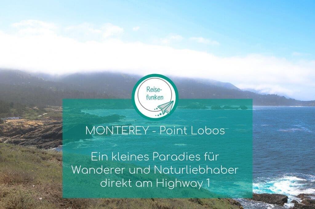 Monterey - Point Lobos - Highway 1