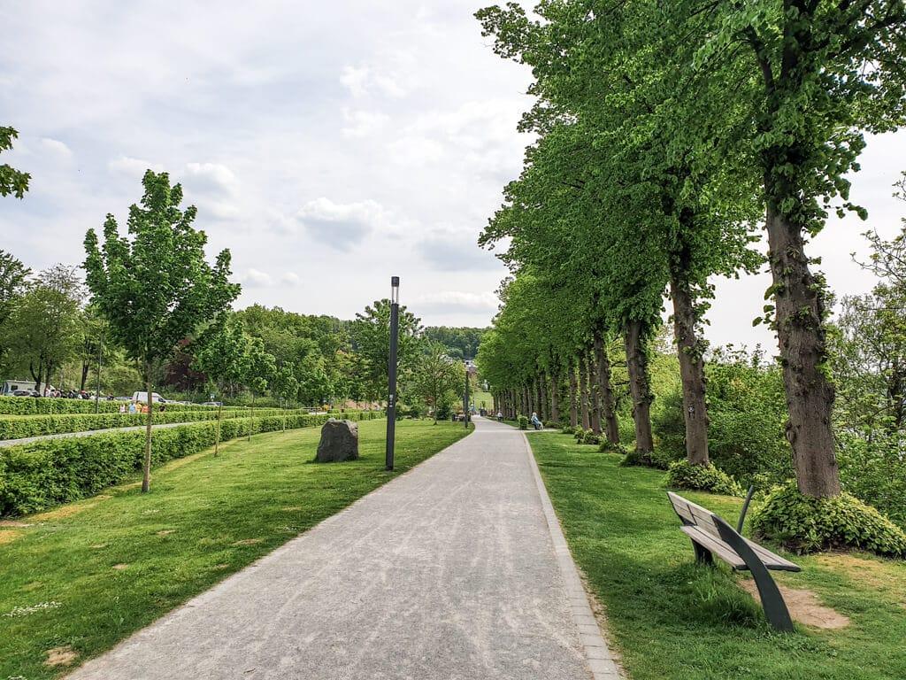 Spazierweg führt zwischen Bäumen und Wiesen entlang
