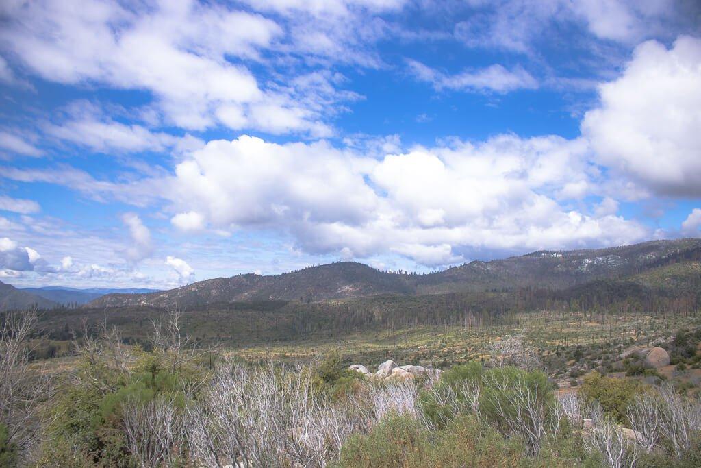Yosemite Nationalpark - Wiese, Berge im Hintergrund, blauer Himmel mit weißen Wolken