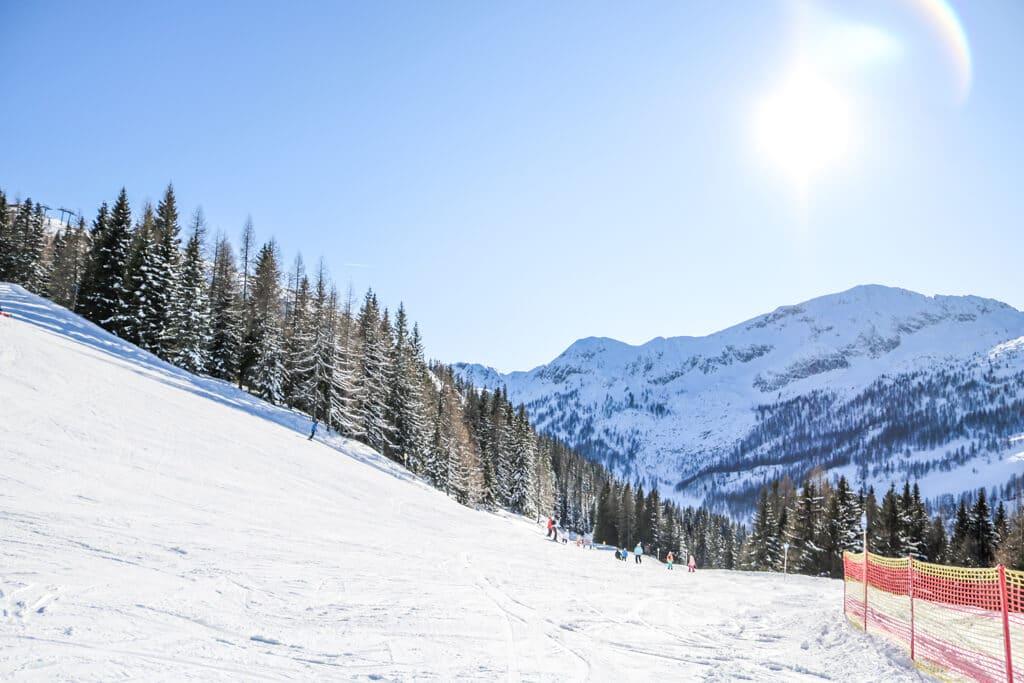 schneebedeckte Bäume im Sonnenschein am Rande einer Skipiste