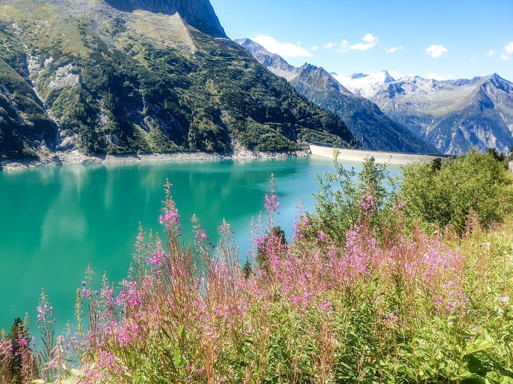 im Vordergrund sind lila blühende Blumen, dahinter liegt ein türkisblauer Bergsee mit weiteren Berggipfeln im Hintergrund.