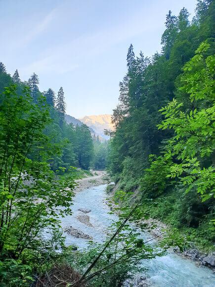 blauer Fluss fließt zwischen Bäumen in den Bergen