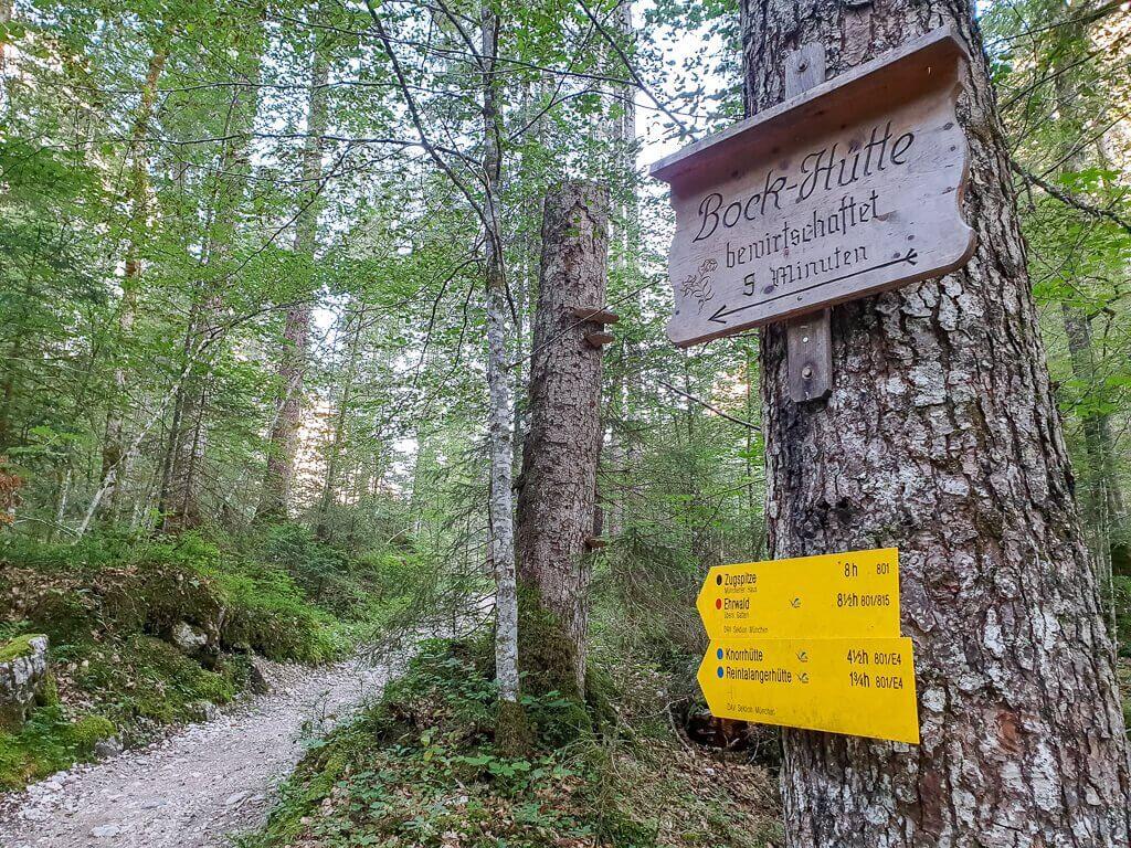 Wegweiser zum Wanderweg an einem Baum - links der Wanderweg im Wald